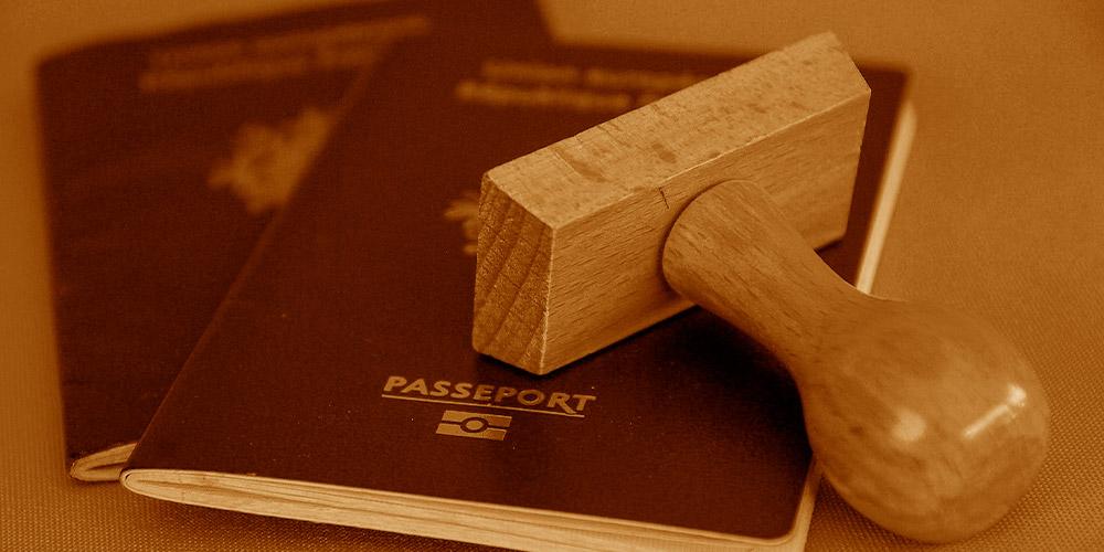 pedidos de visto